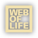 Web of Life - All things are connected